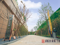 碧桂园·新城·华府实景图